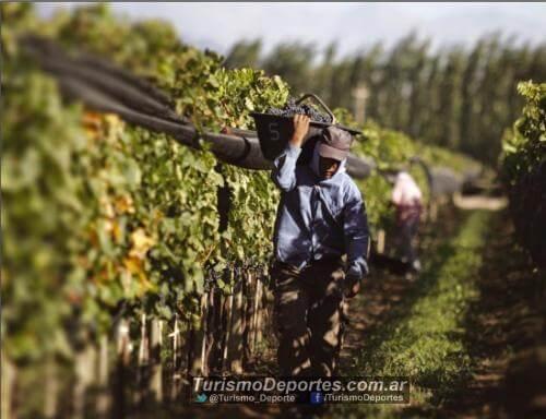 Mendoza Capital Internacional Del Vino