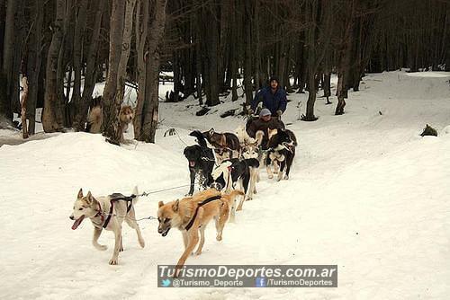 Valle de lobos Ushuaia Tierra Del Fuego
