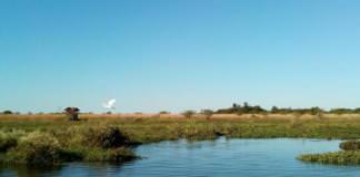 Lago Esteros Del Iberá