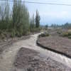 Potrerillos Mendoza Argentina