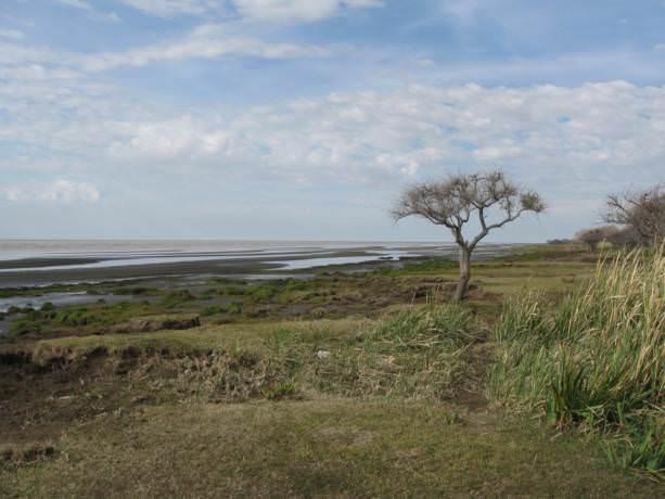 Punta De Indio Buenos Aires