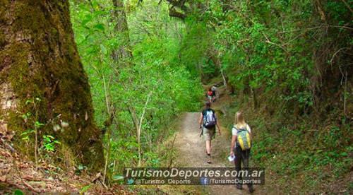 Trekking por la selva en Quebrada de san lorenzo salta